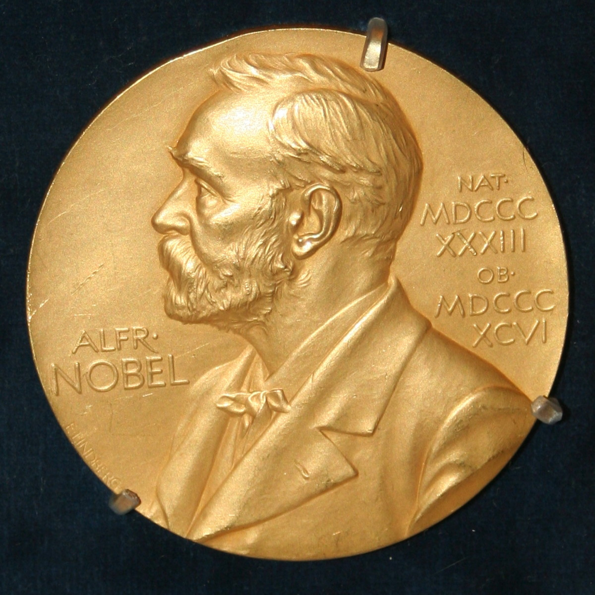 Nobel prize medal.
