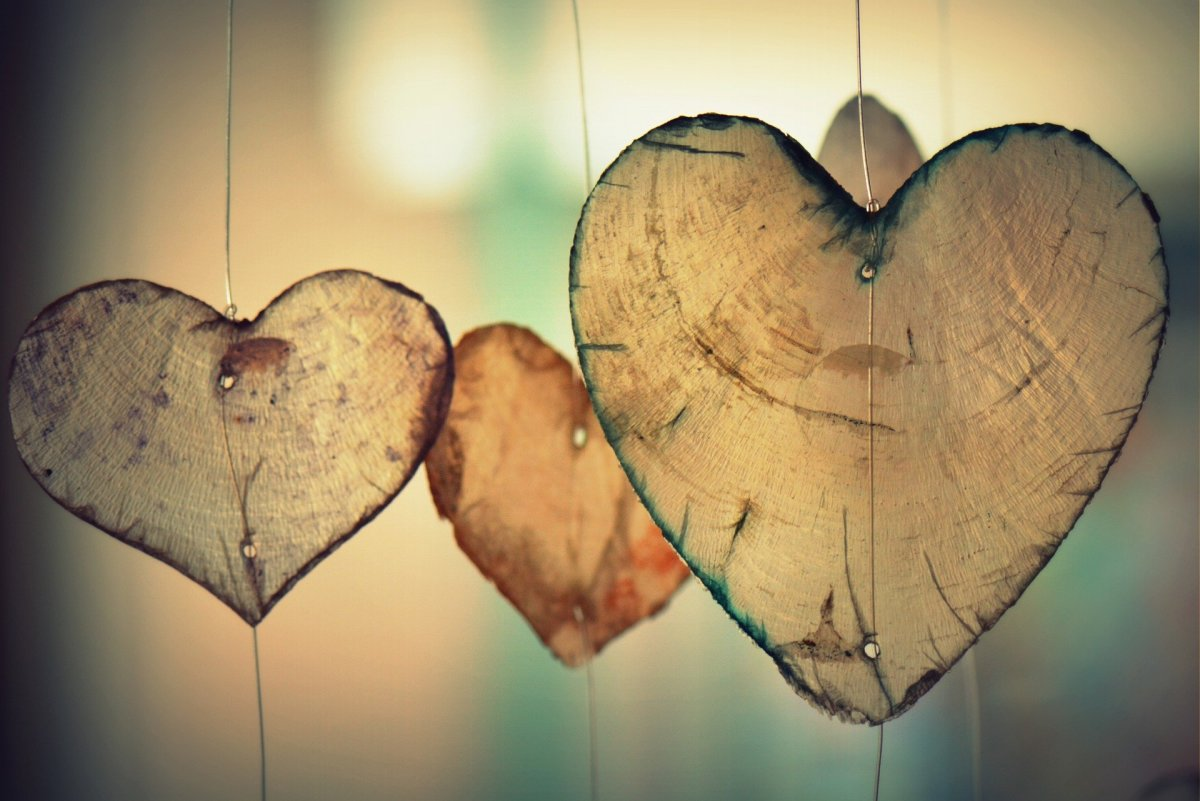 The Science Behind Why We Fall in Love