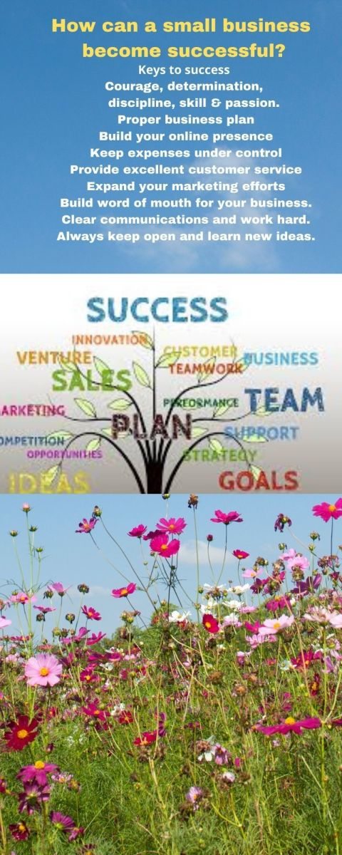 how-can-you-get-business-success-soon