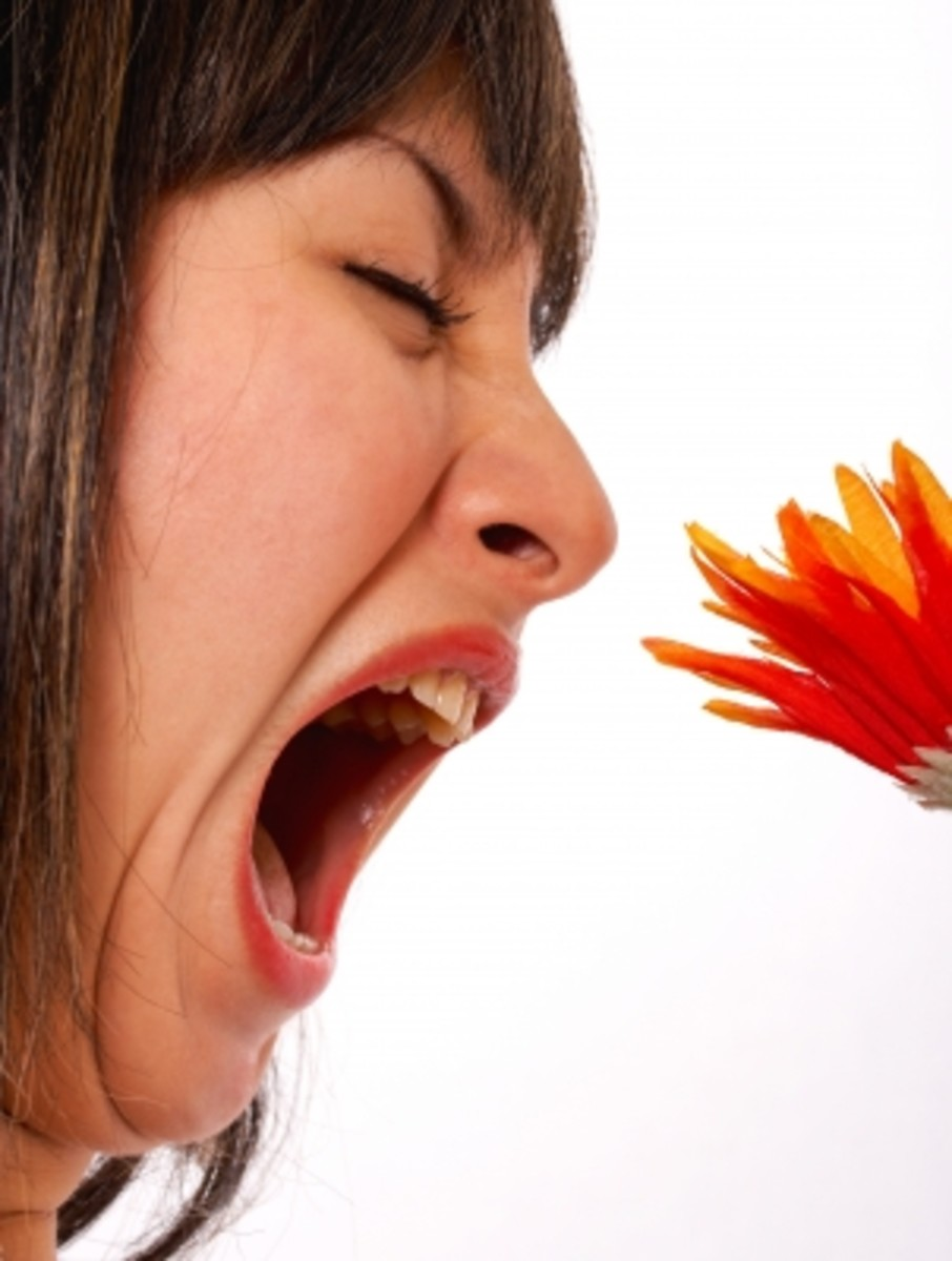About Seasonal Allergies, Pollen Allergy, Hay Fever And Natural Home Remedies To Control Them