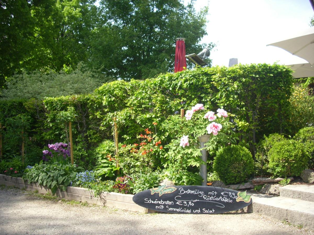 Zur Linde, King Bavarian Restaurant garden.