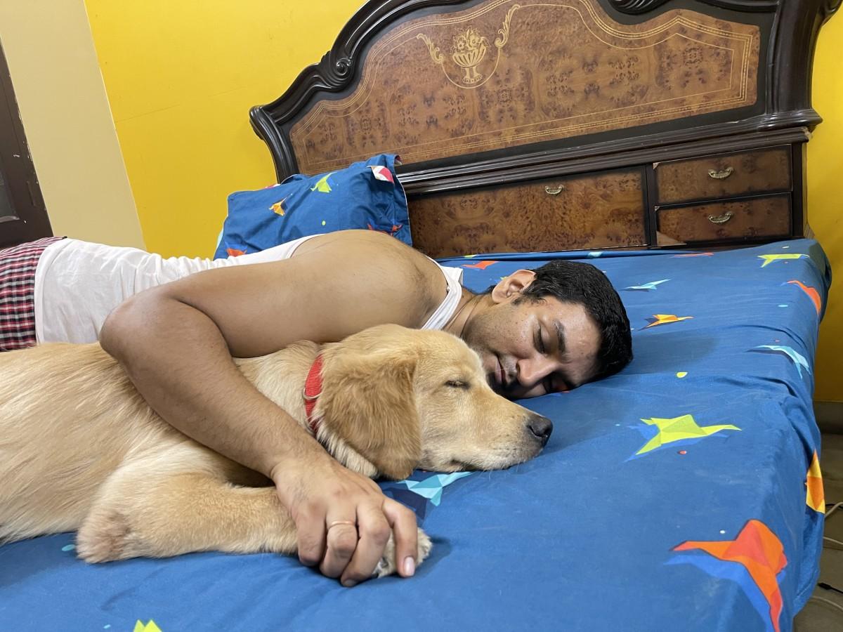 Austin(Golden Retriever) sleeping with Dad