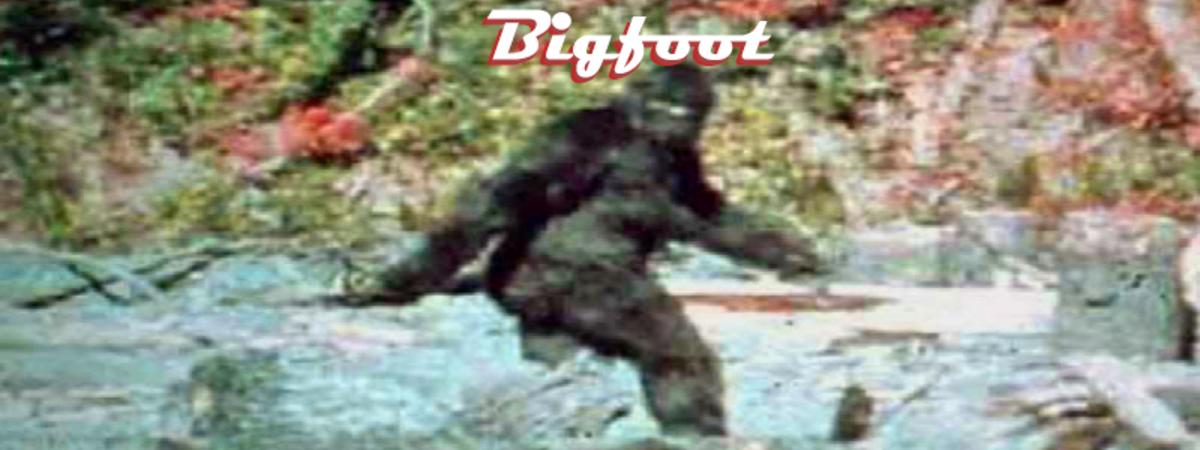 The Legendary Bigfoot