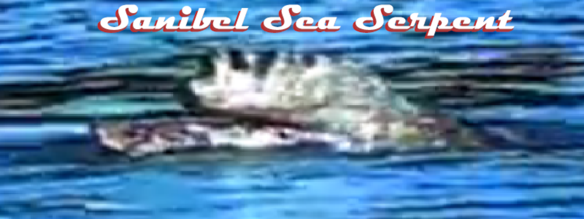 The Sanibel Sea Serpent