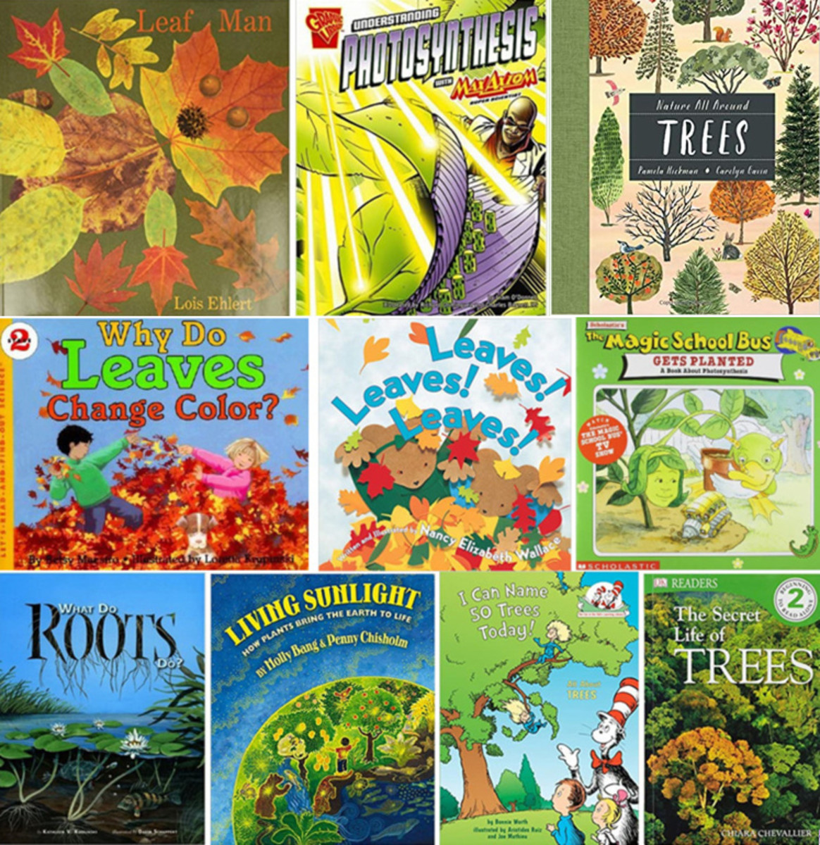 Favorite Children's Books on Roots, Stems, Leaves, and Trees