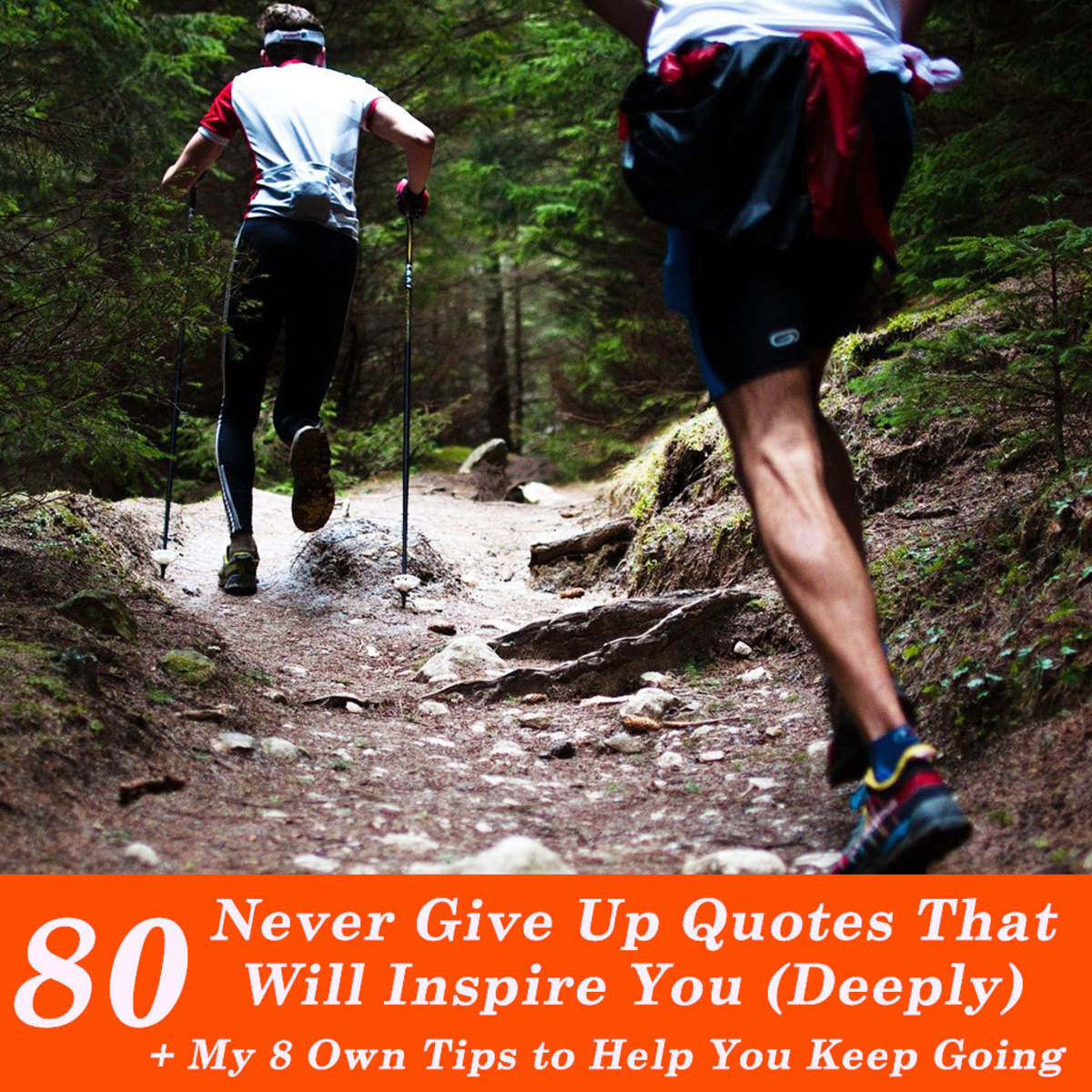 80 Never Give Up Quotes That Will Inspire You (Deeply)