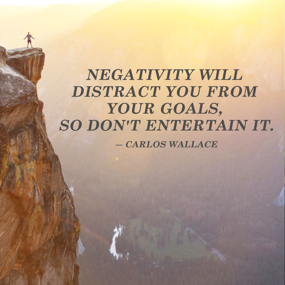"""""""Negativity will distract you from your goals, so don't entertain it."""" ― Carlos Wallace"""