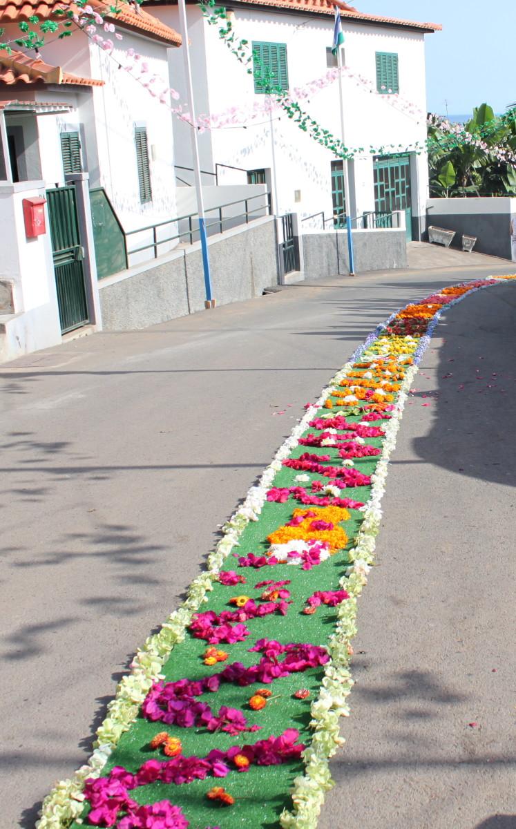 A Flower Carpet