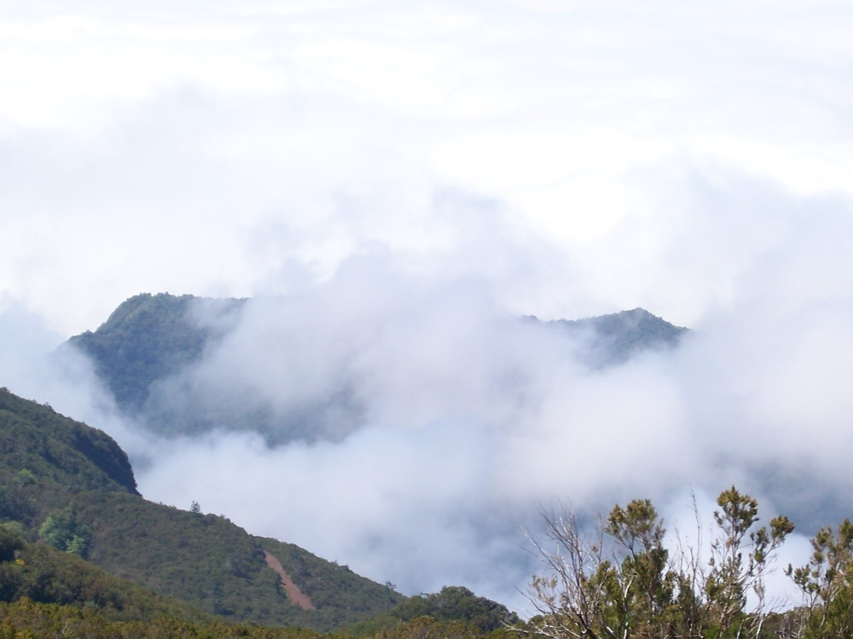Among The Clouds, Madeira