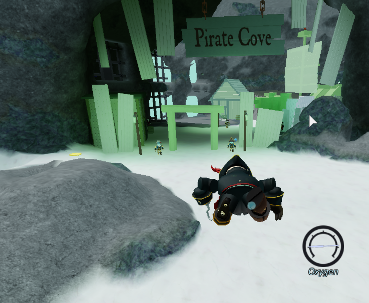 Entering Pirate's Cove requires you to fit in with the pirates, or else they'll make you... swim the plank?