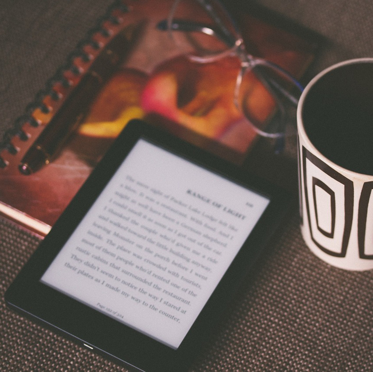 Kindle reading device mug