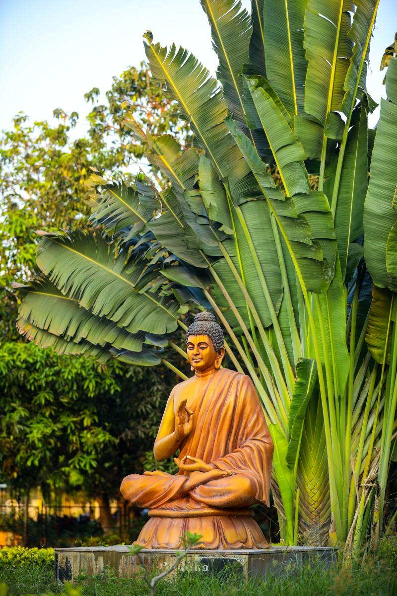 Zen in its essence is the art of seeing into the nature of one's being, and it points the way from bondage to freedom. – D.T. Suzuki