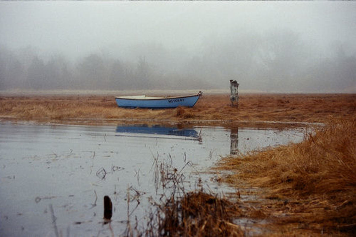 A foggy morning in Barnstable, MA. Photo by chany14 on flickr, licensed under CC 2.0.