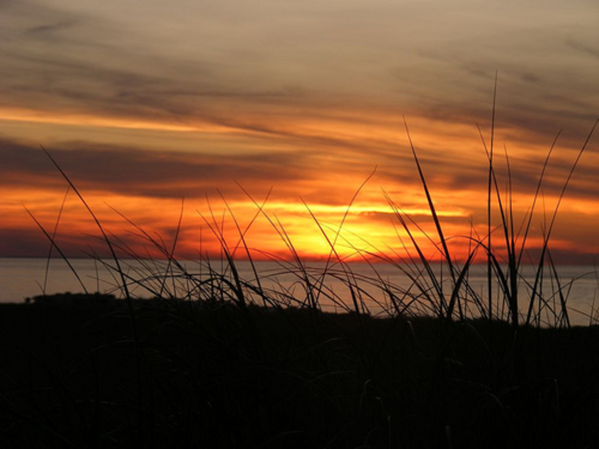 Race Point at sunset, in Provincetown. Photo by kimbospacenut on flickr, licensed under Creative Commons 2.0.