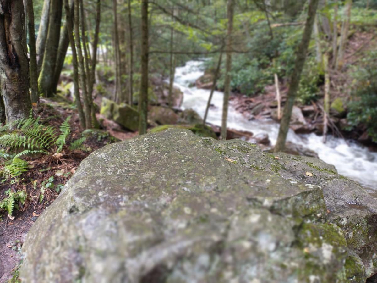 Buck Mountain Creek