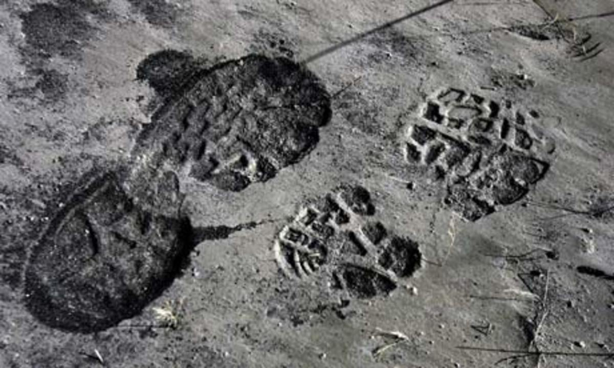 """""""saw the footprints on the gray-covered ground. """""""