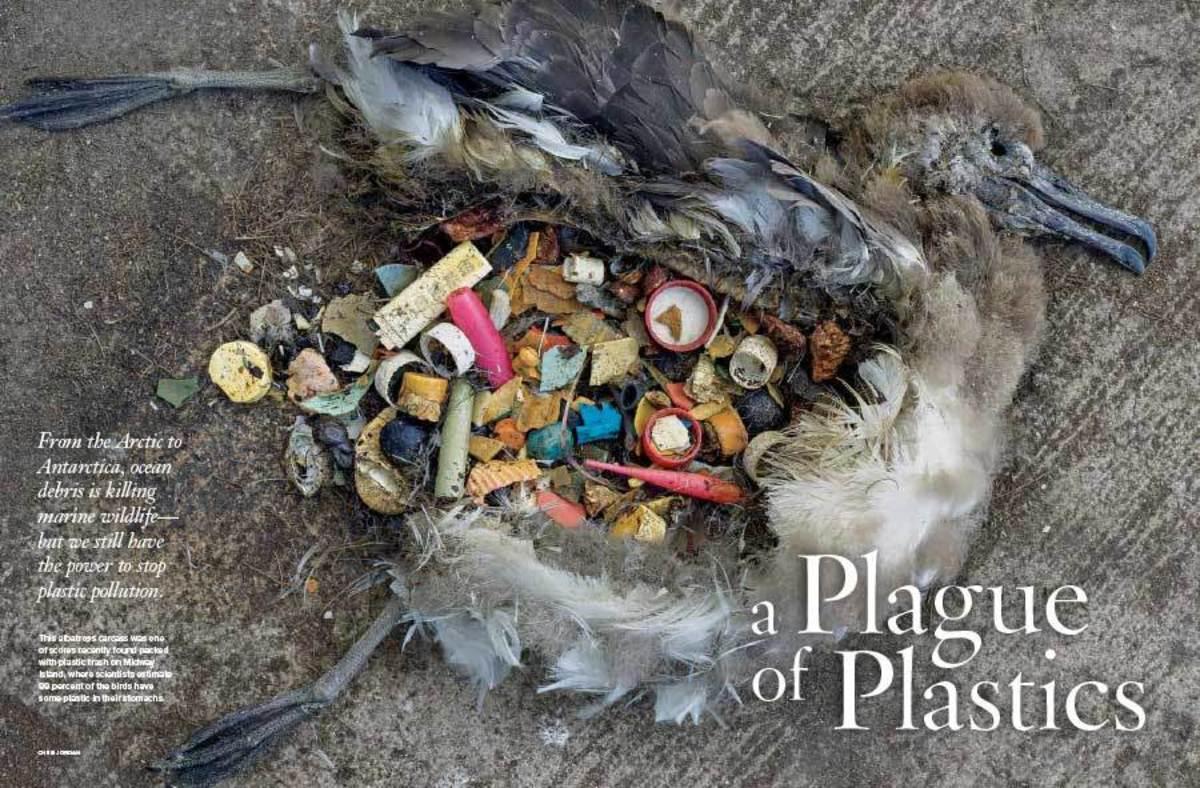 the-era-of-lifesaver-plastic
