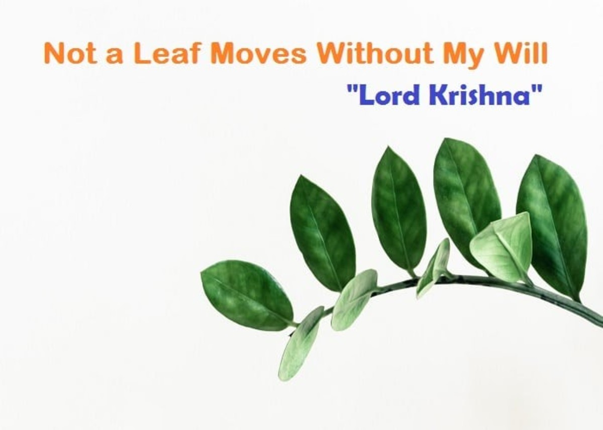 an-ode-to-love-and-lord-krishna