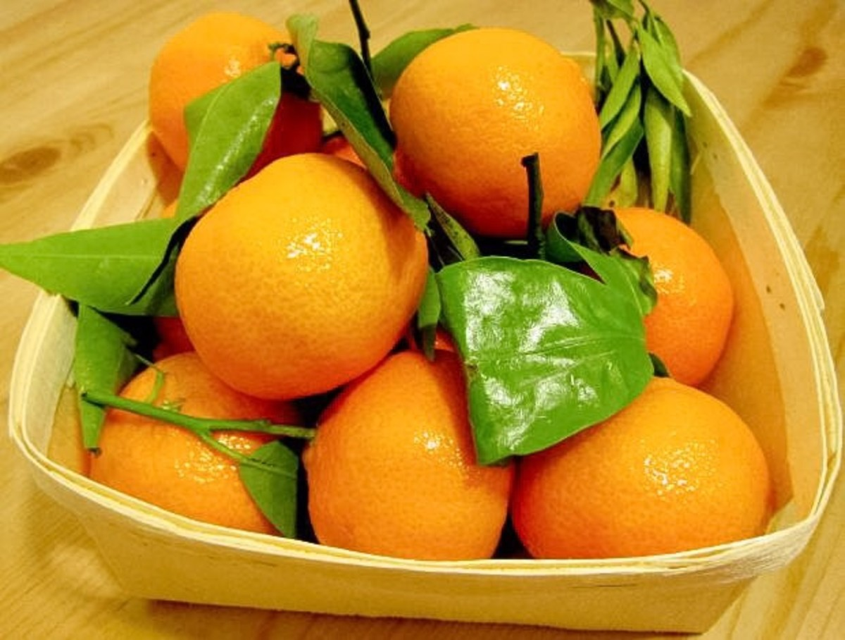 Oranges and tangerines are rich in vitamin C, which is an antioxidant.