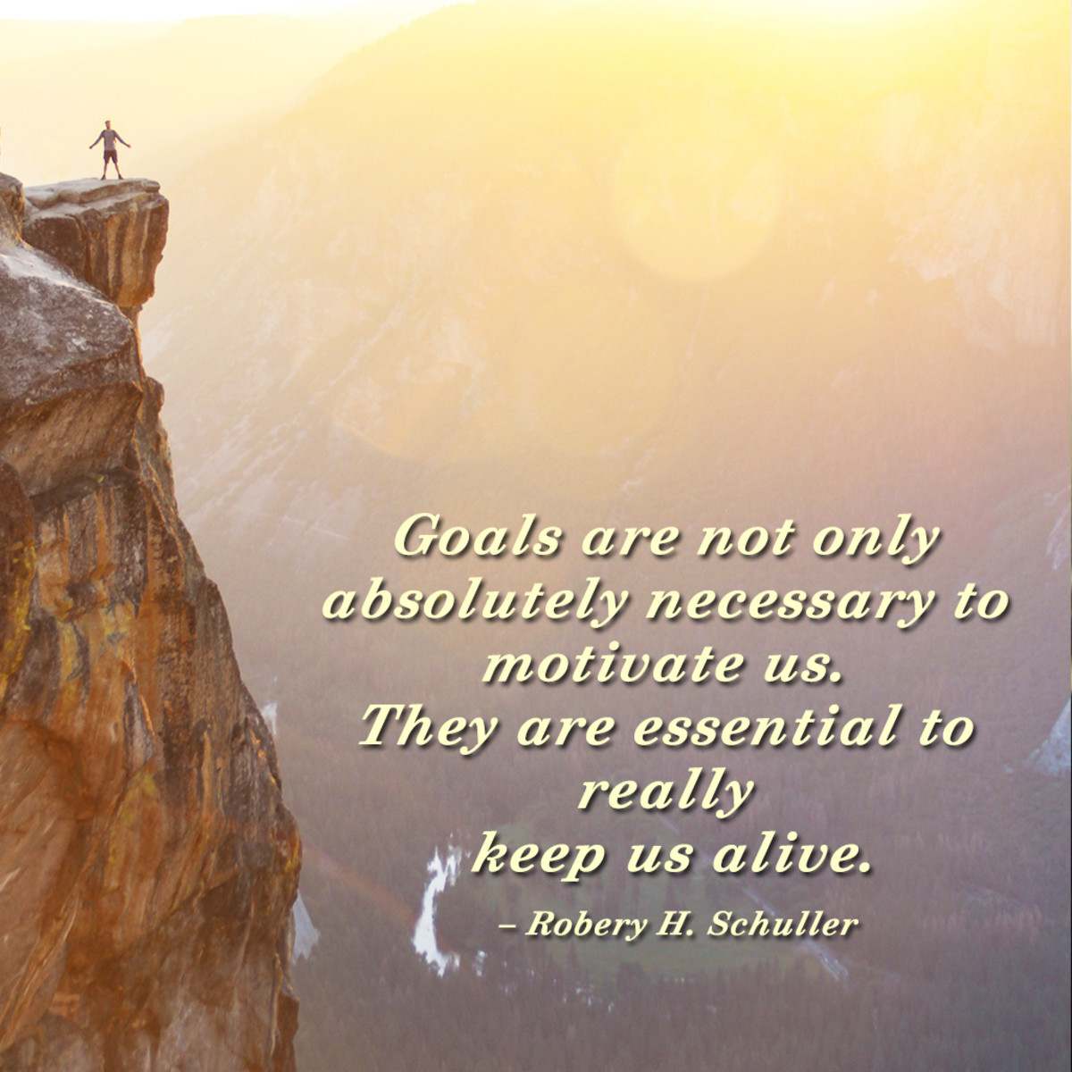"""""""Goals are not only absolutely necessary to motivate us. They are essential to really keep us alive."""" ― Robery H. Schuller"""