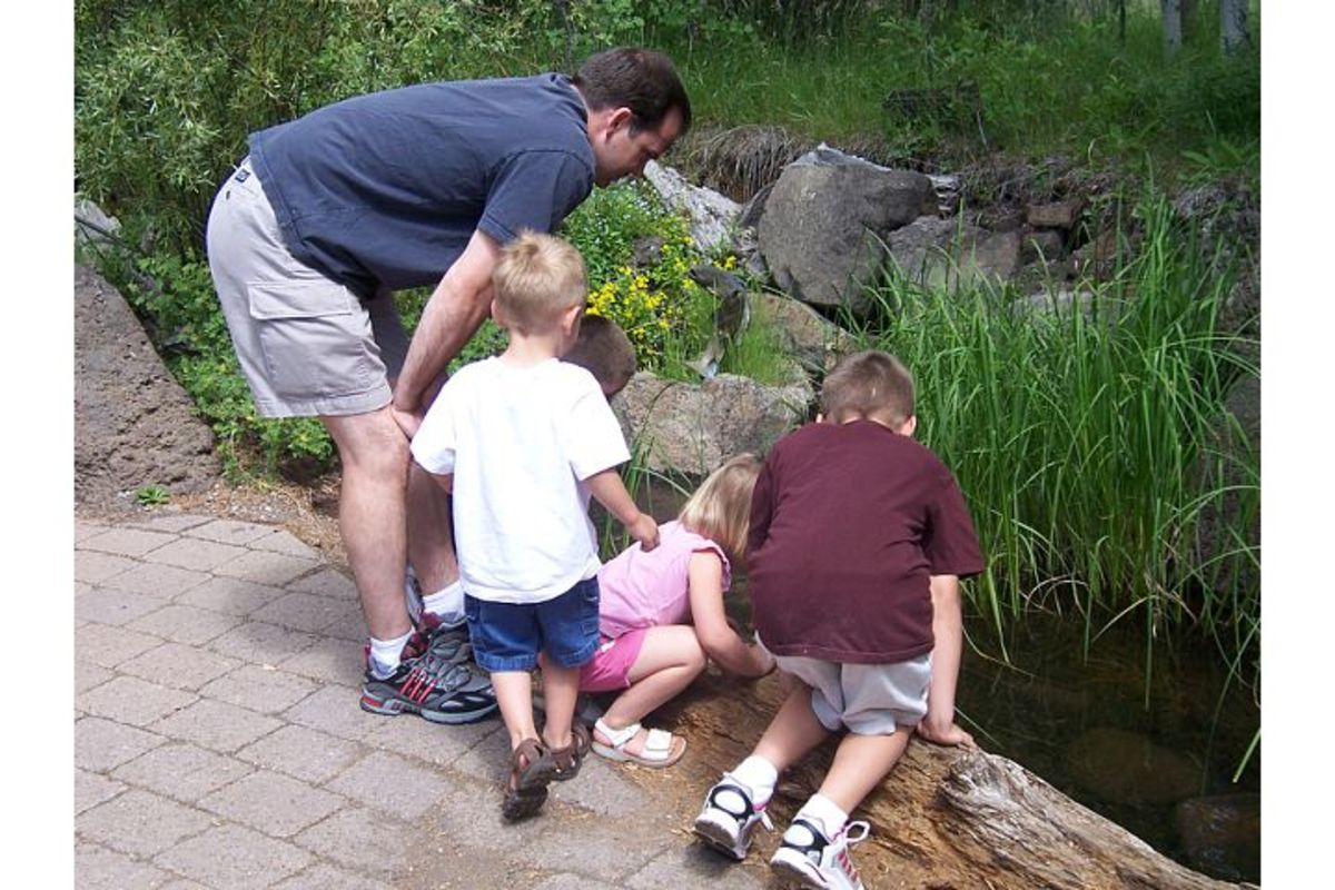 Checking out fish in a stream outside the High Desert Museum (c) Stephanie Hicks