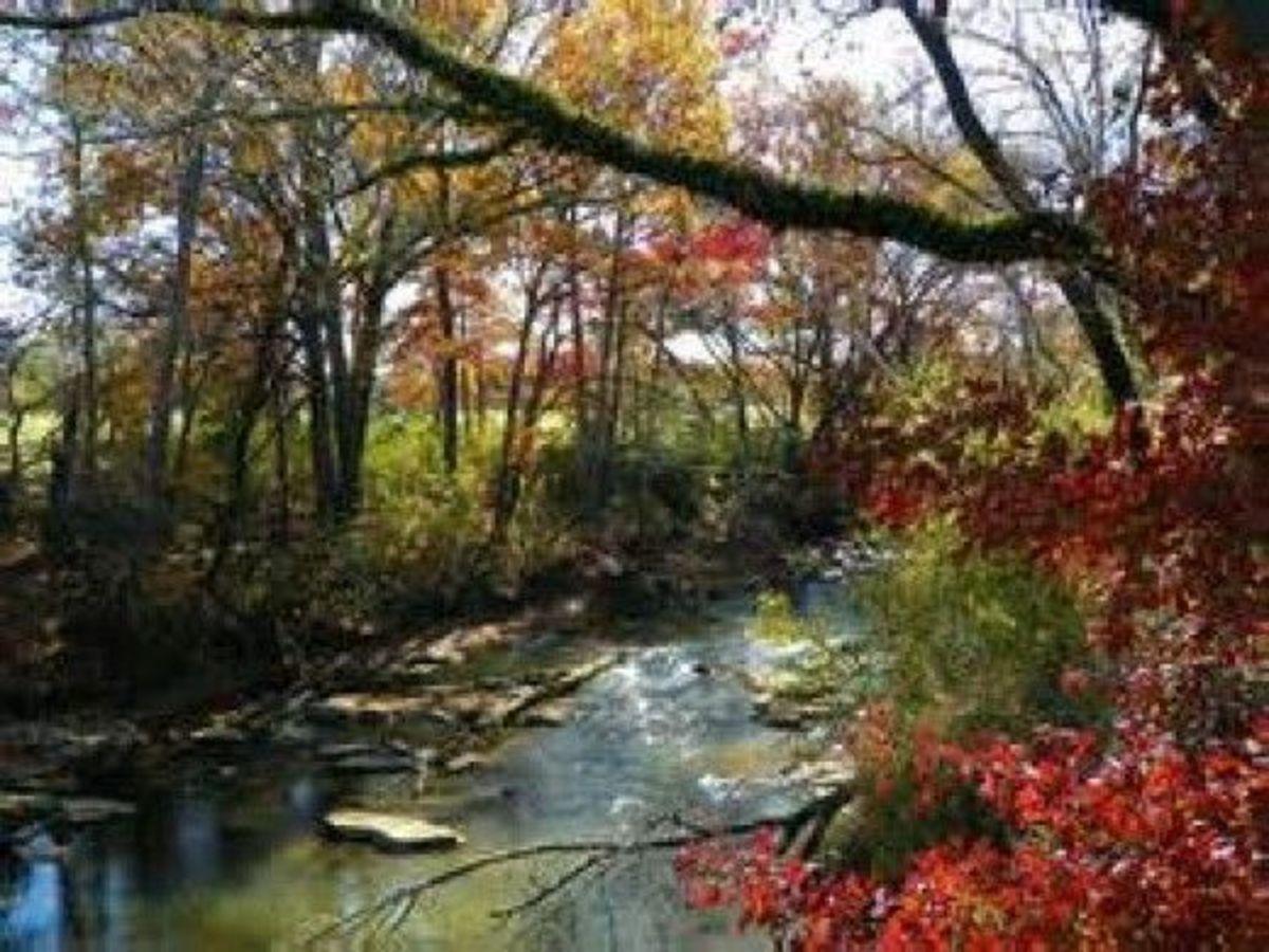A Creek Named Chickamauga