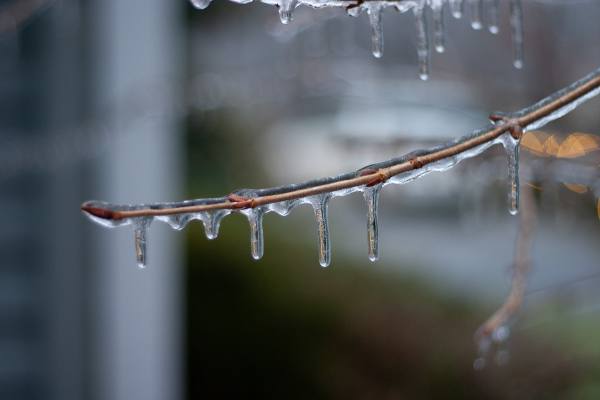 B-r-r-r-r, is the language of icicles.