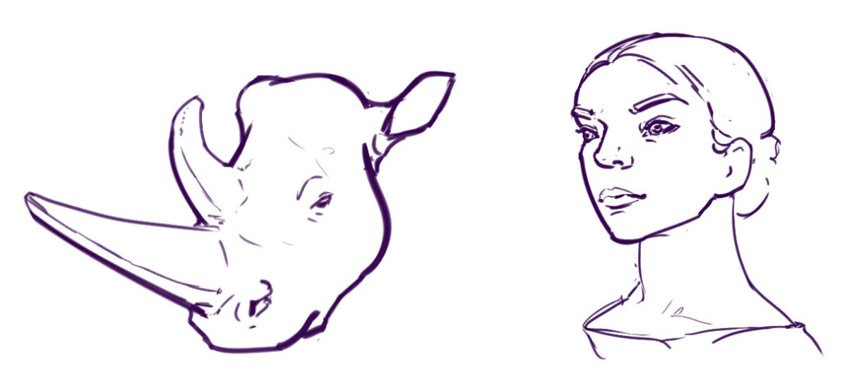 learn-to-draw-a-rhino-not-a-horse