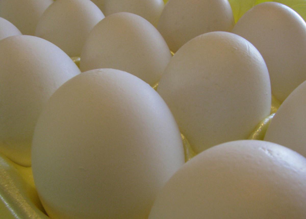 White Eggs (Photo Credit: terren in Virginia)