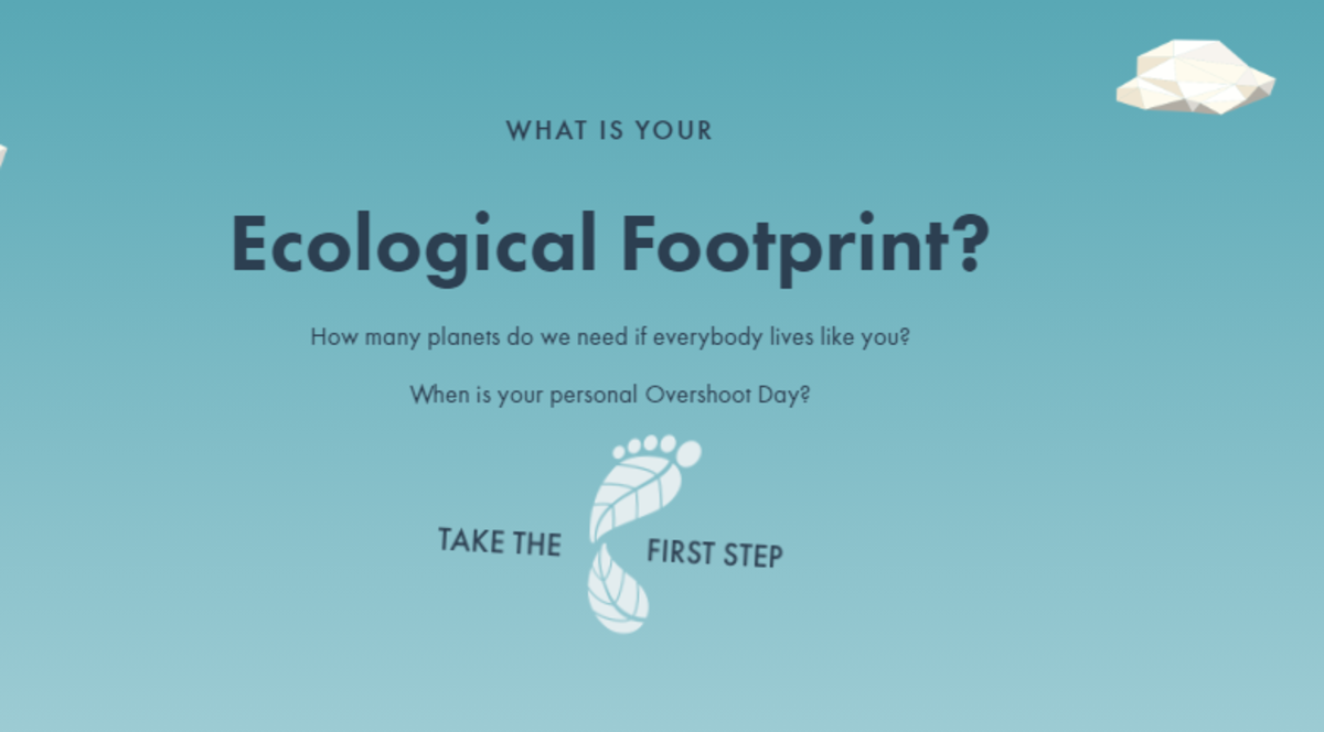 what-is-your-impact-on-the-earths-climate-2-online-quizzes-can-tell-you-how-youre-doing