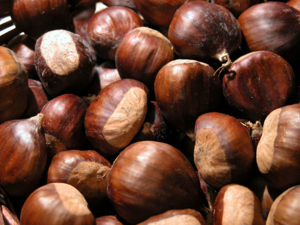 Chestnuts with the shell off