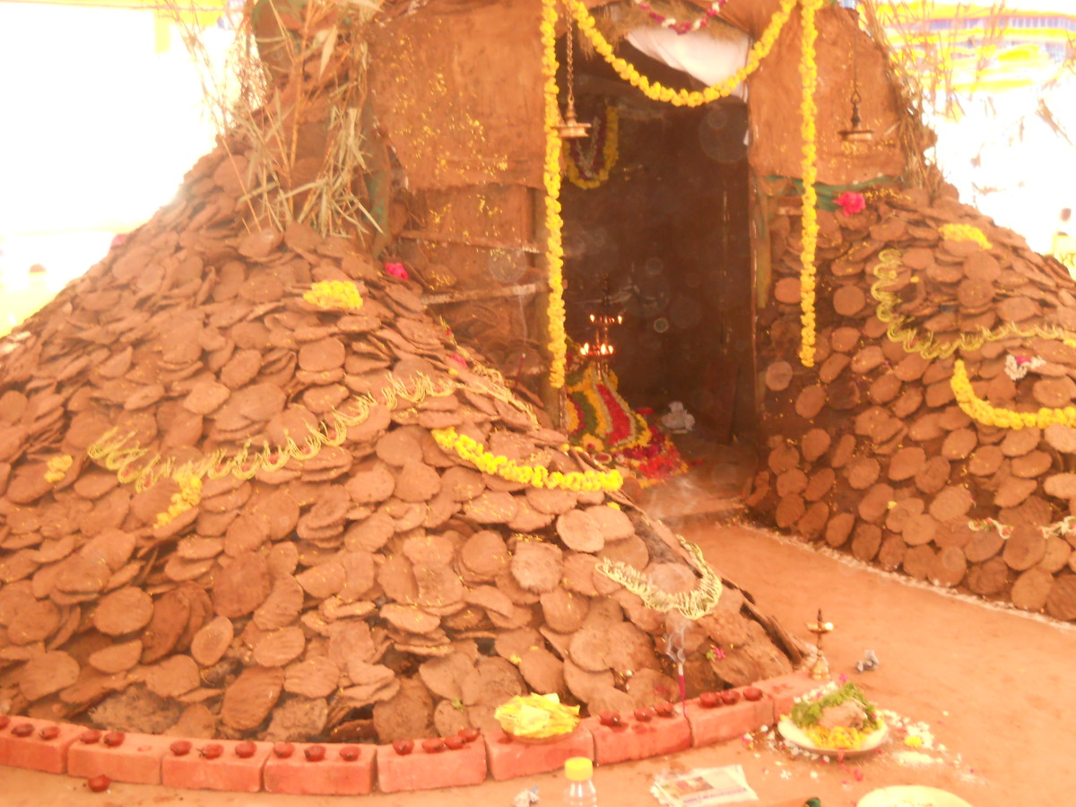 Cow's dung dried pellets heaping at Mangala Gou Yatra exhibition in Mangaluru