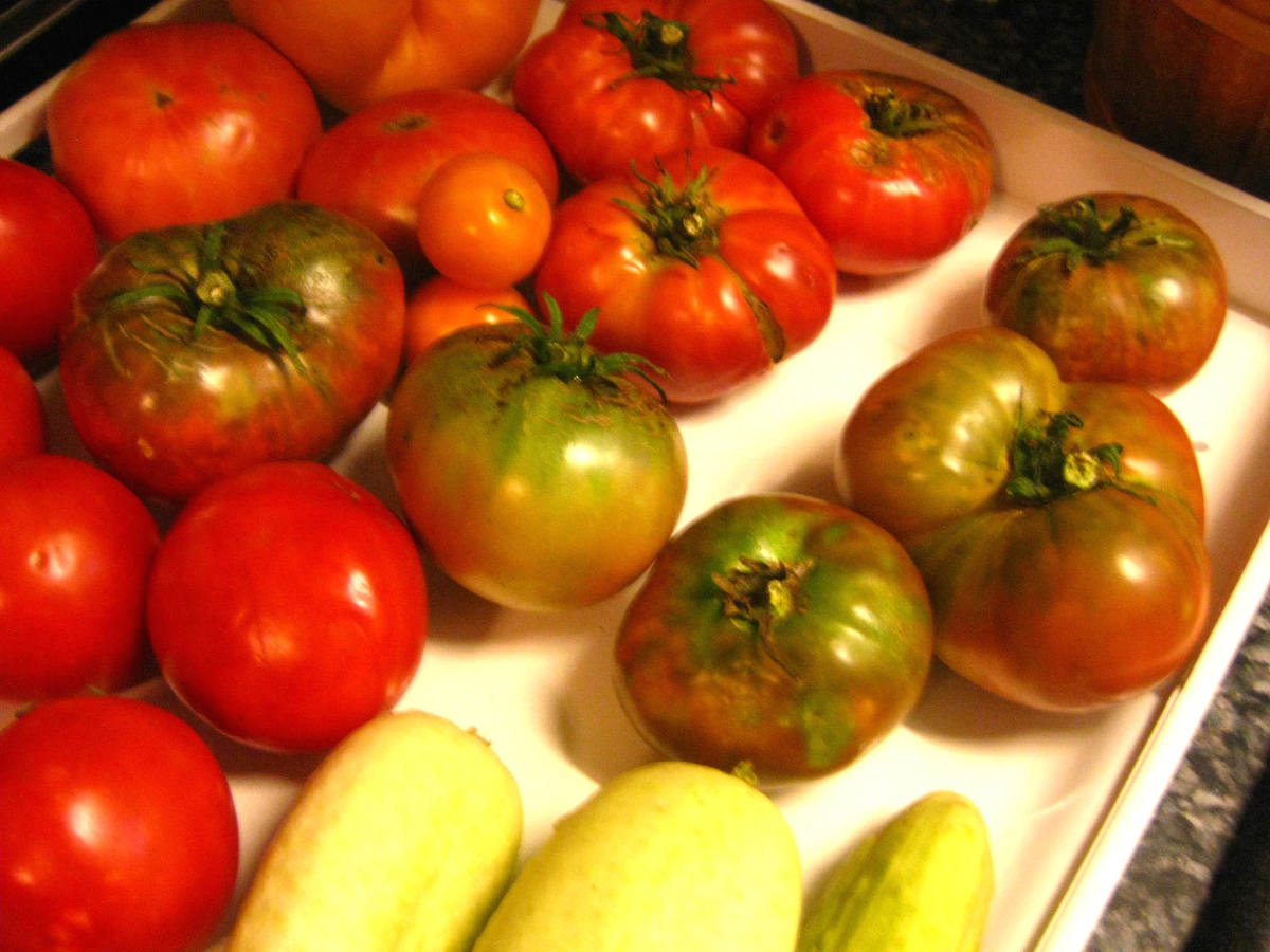 Pesticides Are A Danger To Health And The Environment Choose Organic Food Hubpages