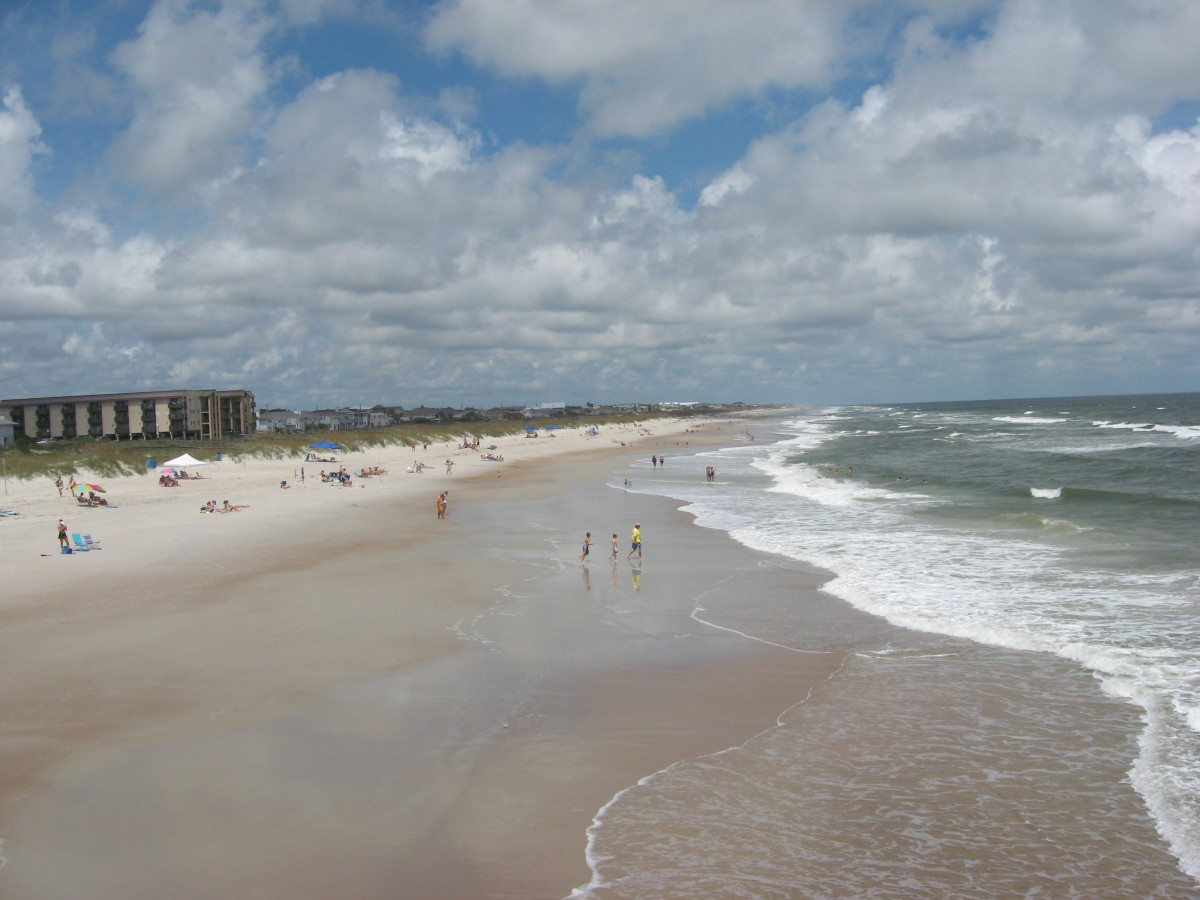 Amelia Island: Dining Guide