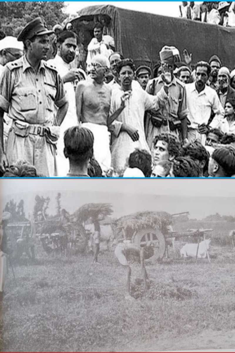 In Photo, Gandhiji talking with people and farmers harvesting the indigo crop.