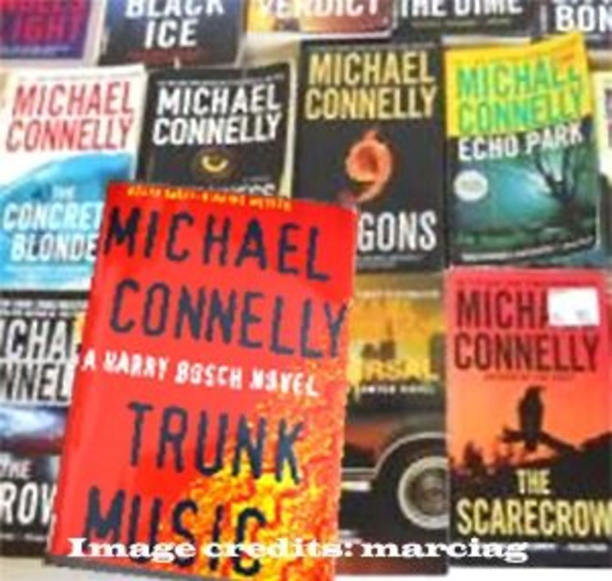 Part of my collection of Michael Connelly books - too many to show all in one photo!