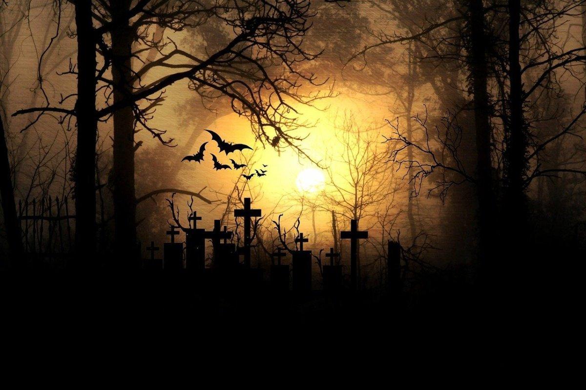 A perfect Halloween scene