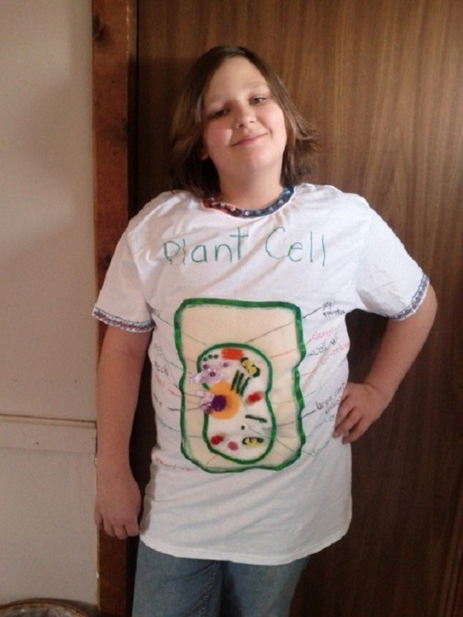 Plant Cell Model Project: A Wearable T-Shirt
