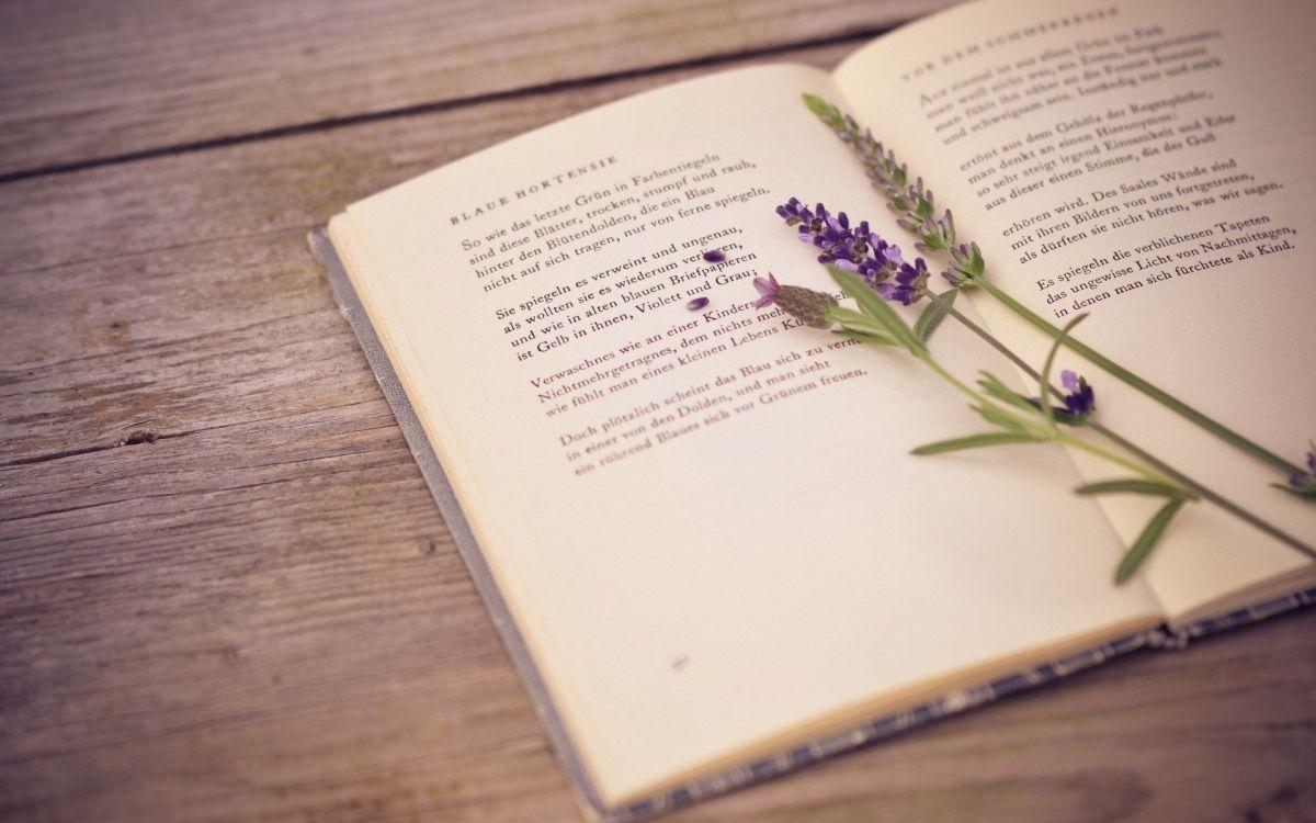 i-write-sins-not-tragedies-part-2-september-edition