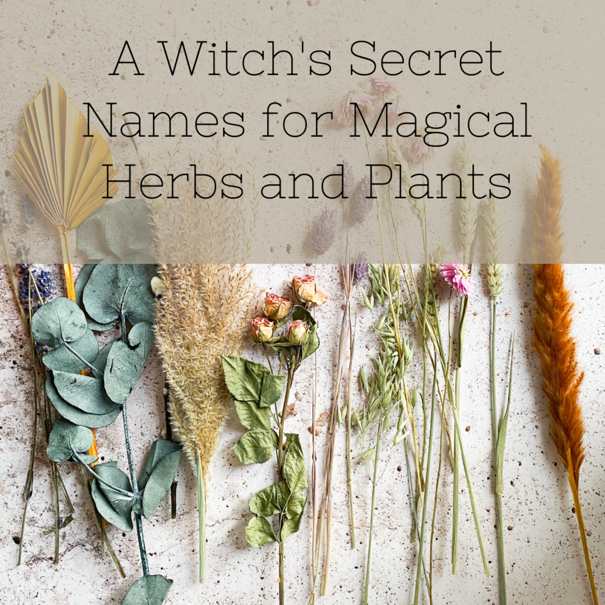 Many who practice plant or herb magic have secret names for the plants they use.