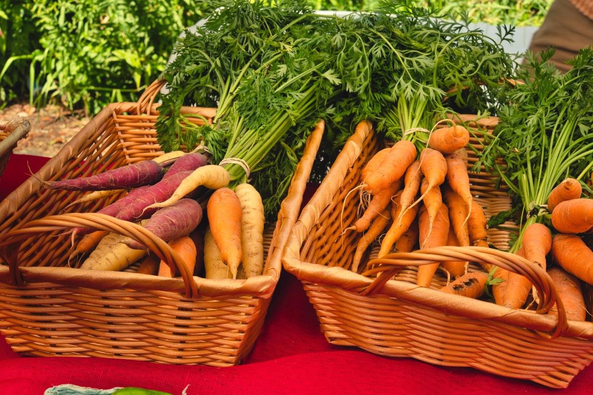 The emergence of summer vegetables is a sign of the summer solstice.
