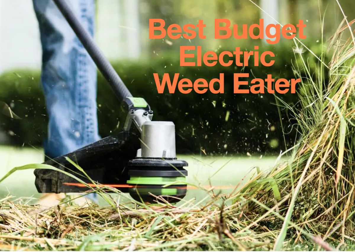 the-best-budget-electric-weed-eaters-for-your-yard
