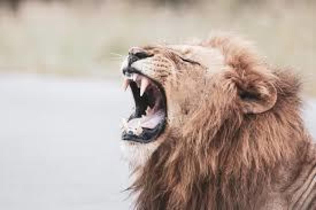 8-effective-ways-to-overcome-anger