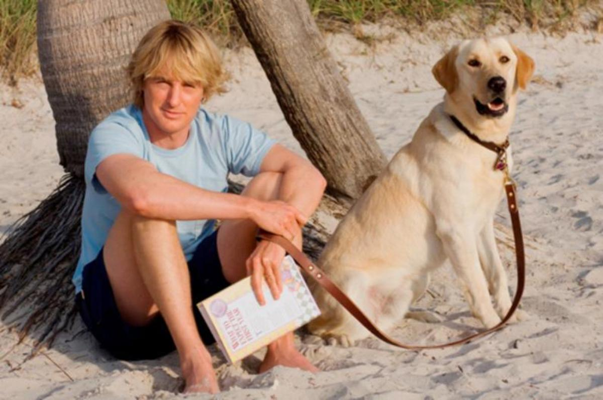 best-books-for-dog-lovers