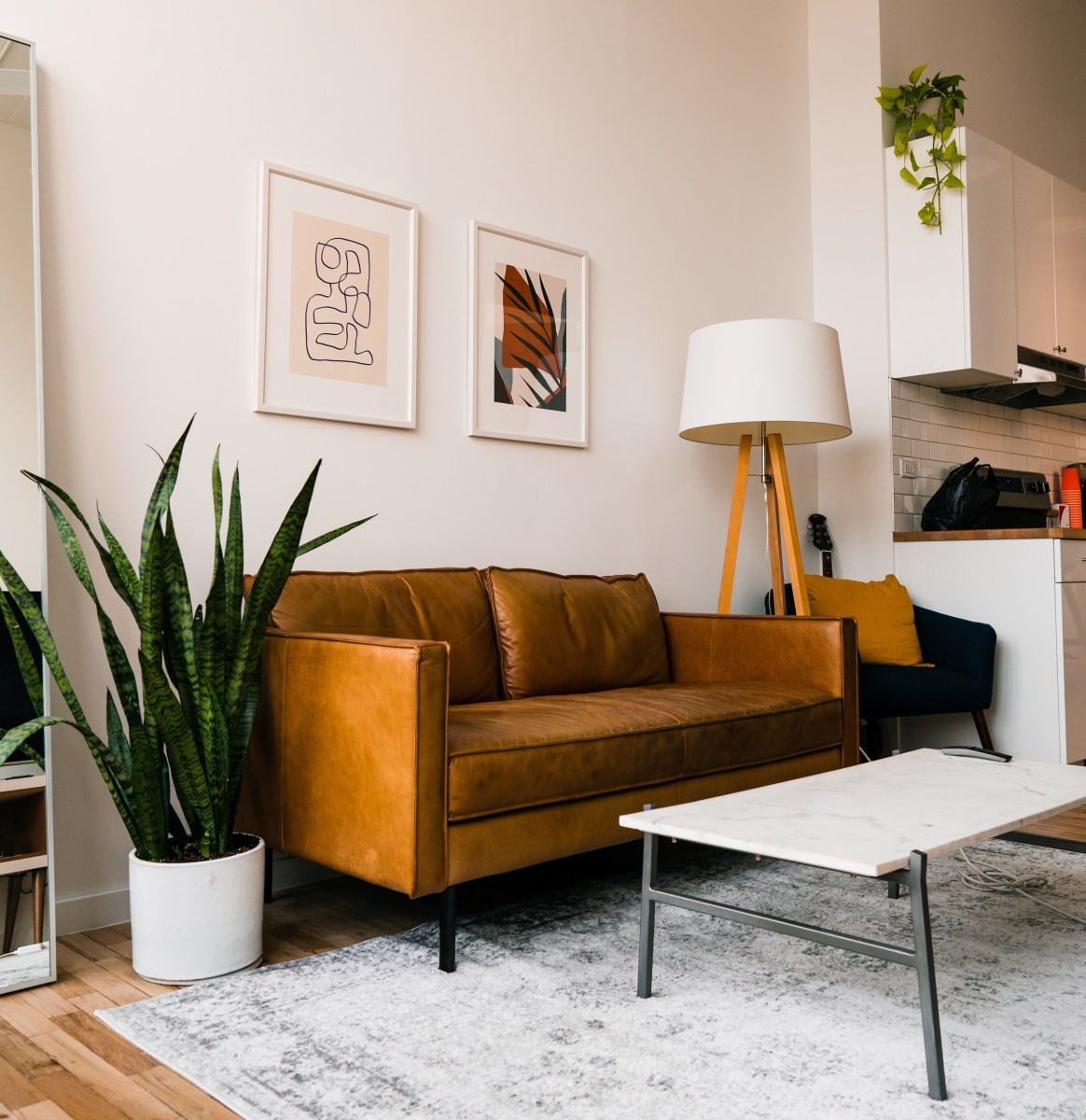 a-short-guide-on-integrating-indoor-plants-in-your-interior-design