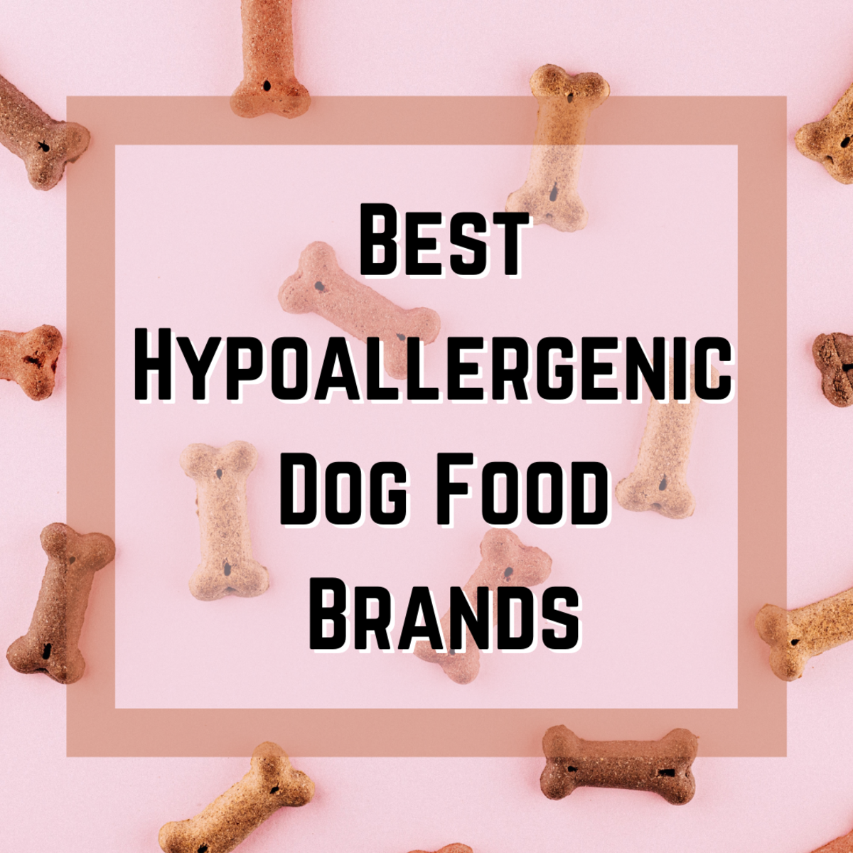 Learn whether your dog needs hypoallergenic food, and take a look at the top 5 hypoallergenic dog food brands.