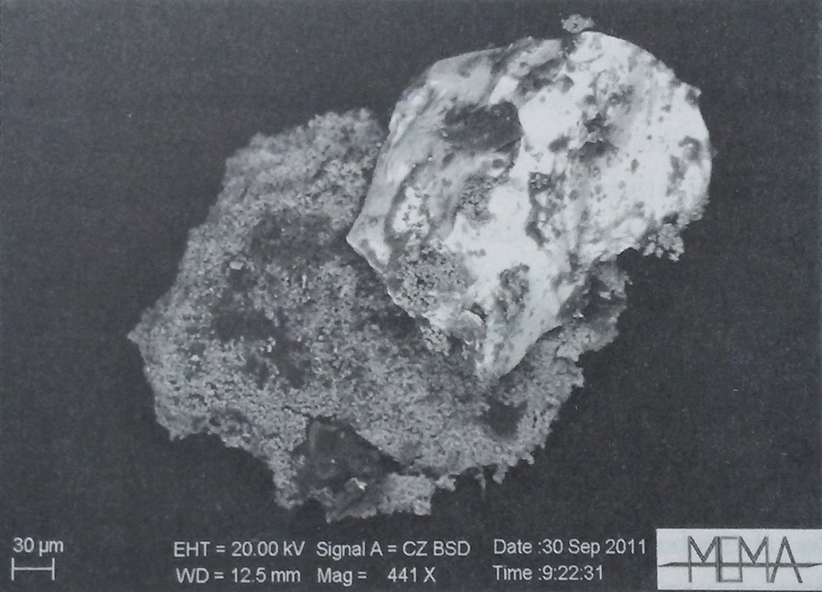 One of the recovered samples.
