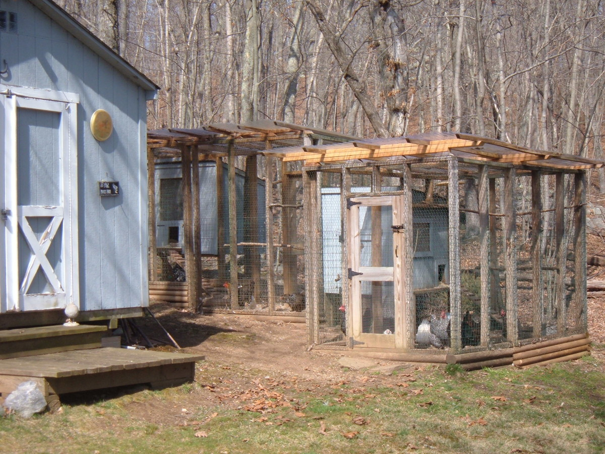 Our Chicken Coop and Enclosed Run