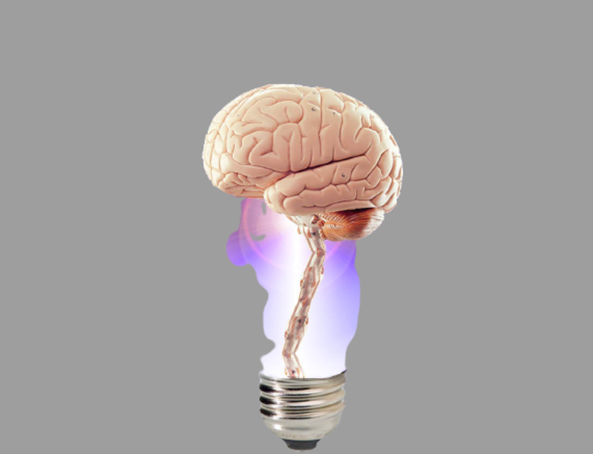 how-can-you-make-your-brains-memory-sharper
