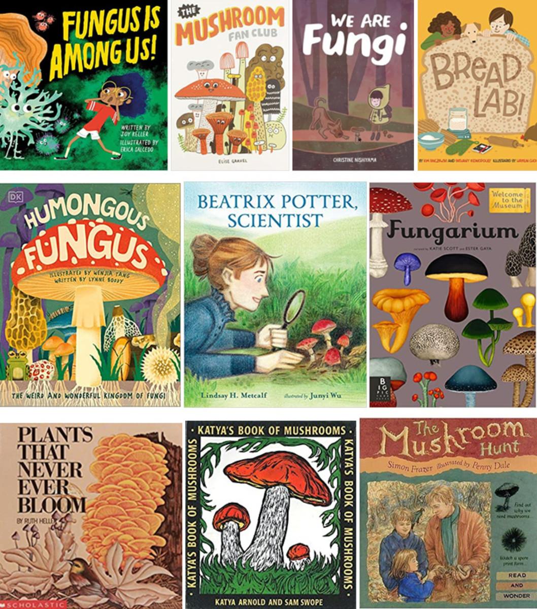 Best Children's Books on Fungi